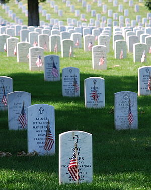 Picture of graves decorated with flags at Arli...
